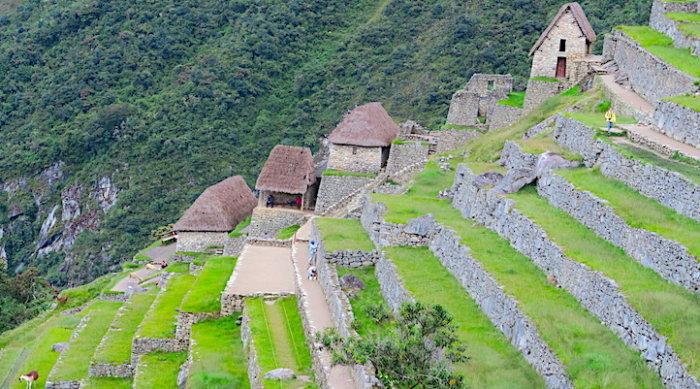 マチュピチュ遺跡の段々畑