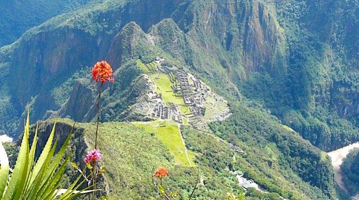 マチュピチュ山から見下ろしたマチュピチュ遺跡