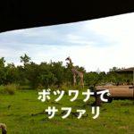 ボツワナ旅行で、サファリを10倍アツく感動体験するためには!