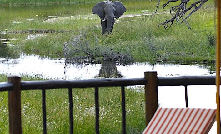 ボツワナのチョベ近くのホテルテラス
