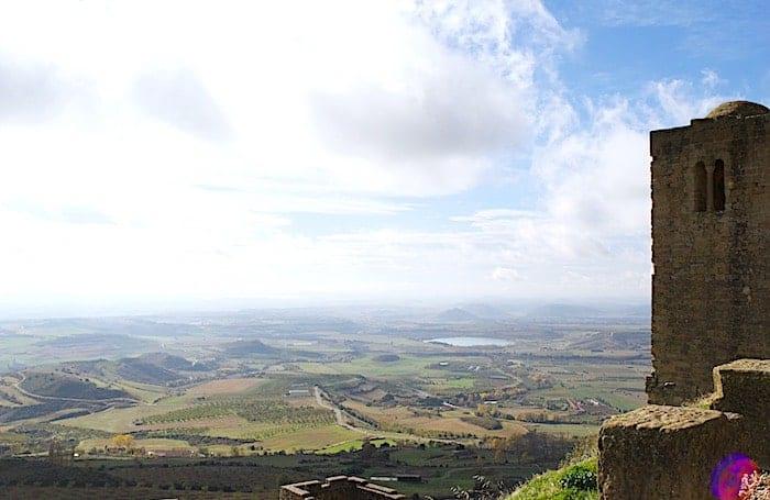 ロアーレ城入り口前からの平原の景色画像