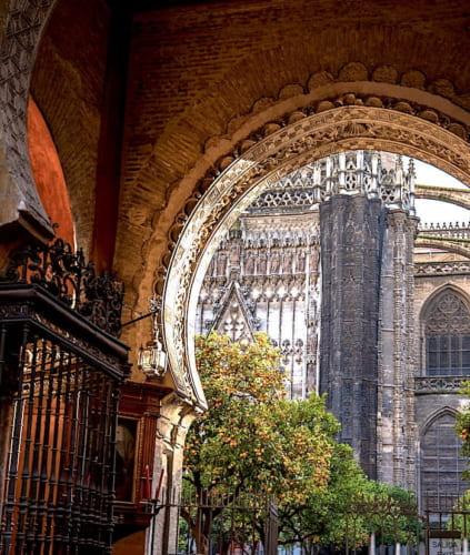 セビリア大聖堂の中庭の画像